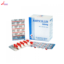 Ampicillin 500mg DMC