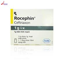Rocephin Inj.1g