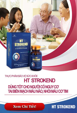 HT STROKEND Hỗ trợ điều trị tai biến mạch máu não